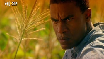 "Csi: Miami - Csi: Miami ""bad Seed 8 /5"""
