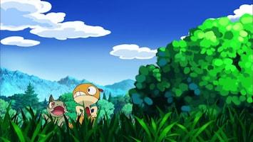 Pokémon - Scraggy En De Veeleisende Gothita