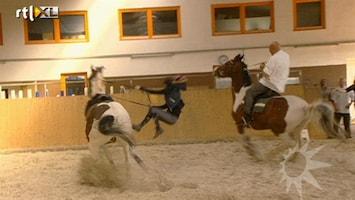 RTL Boulevard Herman dan Blijker valt van paard