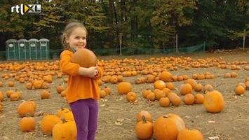 RTL Nieuws Pompoenencrisis in VS vlak voor Halloween