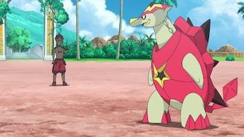 Pokémon Kijk, leer en bewonder!