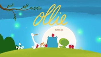 Ollie Blaadjes