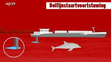 Editie NL Afl. 116