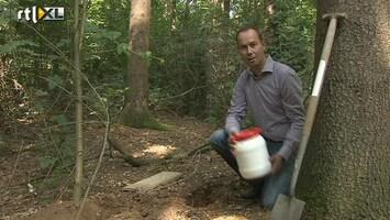 RTL Nieuws Geocaching steeds populairder