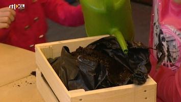Green-kids - Groenste Klas Van Nederland: Heemskerk