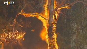 RTL Nieuws Droogte en hevige bosbranden in Australië