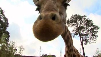 Uitgelicht - Afl. 5: Burgersâ' Zoo