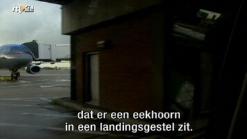 Airport - Airport /3