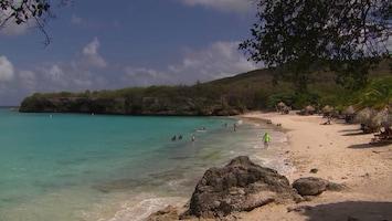 Pluijms Eetbare Wereld Curaçao