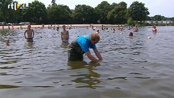 RTL Nieuws 'Niet alle blauwalgen maken gifstoffen'