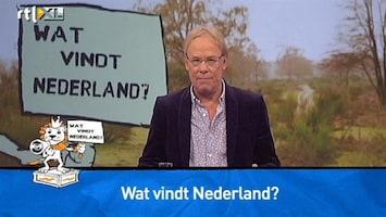 Wat Vindt Nederland? - Wat Vind Jij? Kunst Of Cultuur?