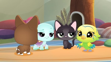 Littlest Pet Shop: A World Of Our Own Afl. 6