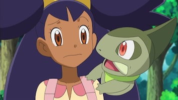 Pokémon - De Bouffalant Overbluffen