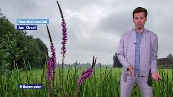 RTL Weer En Verkeer Afl. 487