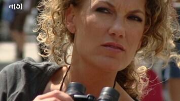 Brutale Meiden: Hemd Van Je Lijf - Uitzending van 02-06-2010