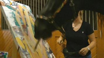 RTL Nieuws Schilderend paard blijkt groot talent