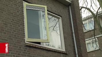 Editie NL Afl. 255