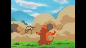 Pokémon - De Vuurpokémon-atleet