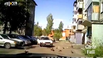 Editie NL Lol: vrouw parkeert dramatisch slecht in