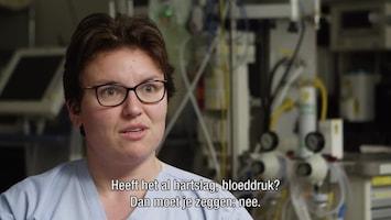 Helden Van Hier: In De Lucht Afl. 4