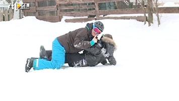 Oh Oh Tirol Skitip 2: Sterretje en Jokertje stunten met hun snowboard!