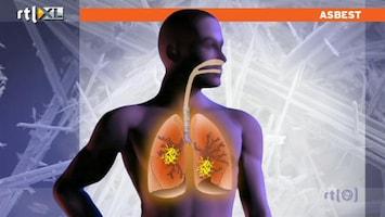 RTL Nieuws 'Paniek om asbest is overdreven en onnodig'