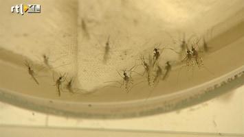 Editie NL Tropische ziektes in de polder