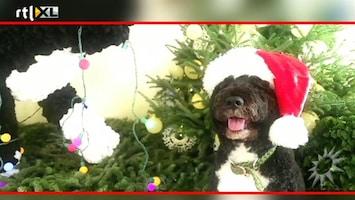 RTL Boulevard Kerst op het Witte Huis