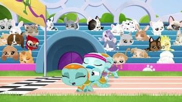 Littlest Pet Shop: A World Of Our Own - Afl. 44