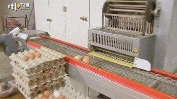 RTL Nieuws Onderzoek naar fraude met biologische eieren
