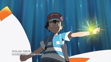 Pokémon Het gevecht overdragen!
