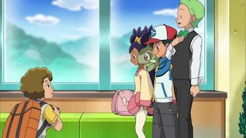 Pokémon - De Vier Seizoenen Van Sawsbuck