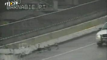 RTL Nieuws Politie-escorte voor ganzenfamilie
