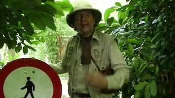 Jungle Club - Afl. 35
