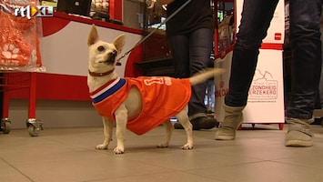 RTL Nieuws Oranje-prullen in alle winkels