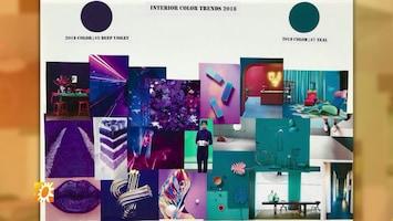 Nieuw jaar, nieuwe inrichting: gedurfde kleurencombinaties helemaal hot