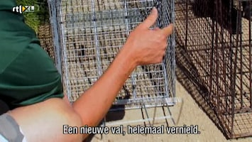 Helden Van 7: Billy The Exterminator Helden Van 7: Billy The Exterminator Aflevering 1