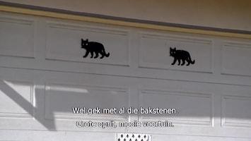 Kopen, Klussen, Cashen - No Risk, No Reward