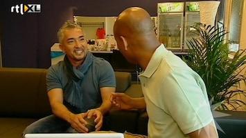RTL Boulevard Humerto Tan in gesprek met Cesar Millan - Who let the dog out