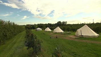 Bed & Breakfast UK Applewood Glamping