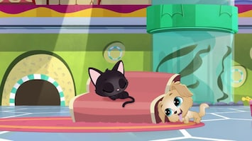 Littlest Pet Shop: A World Of Our Own - Afl. 40