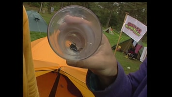 Ernst, Bobbie En De Rest - Een Dief Op De Camping (de Vervalsing)