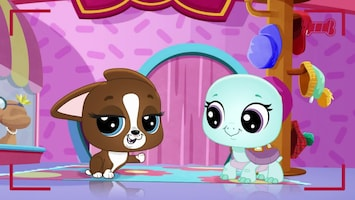 Littlest Pet Shop: A World Of Our Own - Afl. 46