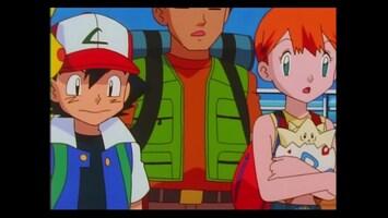 Pokémon De zaak van de K-9 eenheid!