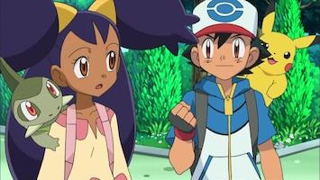 Pokémon Drayden versus Iris: verleden, heden en toekomst!