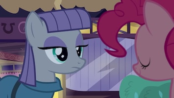 My Little Pony The maud couple