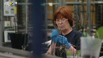 RTL Nieuws Rotterdams werklozenproject loopt uit op fiasco