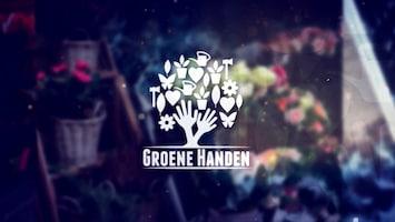 Groene Handen - Afl. 1