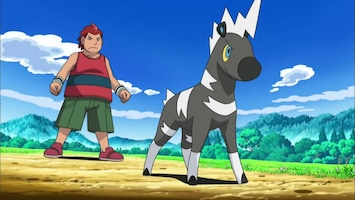 Pokémon De verdwenen Snijschelp van Oshawott!