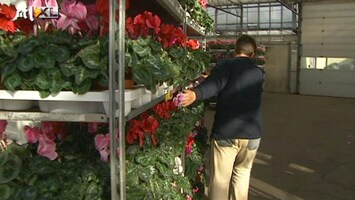 RTL Nieuws Arbeidsinspectie vergeet boetes